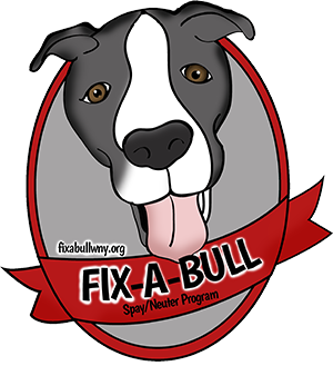 Fix A Bull WNY
